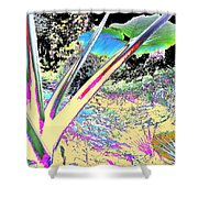 Prana Shower Curtain by Eikoni Images