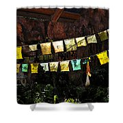 Prayer Flags Shower Curtain