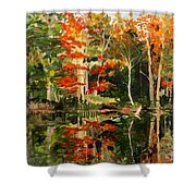 Prentiss Pond, Dorset, Vt., Autumn Shower Curtain