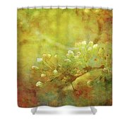 Pre Show Delicacy 8883 Idp_2 Shower Curtain