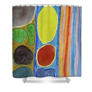 Precious Things In Colourful Stripes Shower Curtain