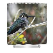 Precious Things  Shower Curtain