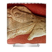 Prehistoric Bison Carving Shower Curtain