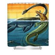 Prehistoric Creatures In The Ocean Shower Curtain