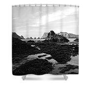 Prehistoric Land Shower Curtain