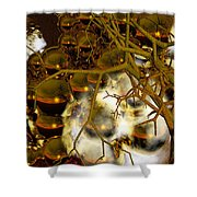Premonitions- Shower Curtain