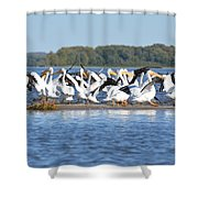 Preparing For Take Off Shower Curtain