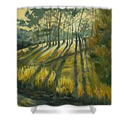 Presidio Shower Curtain