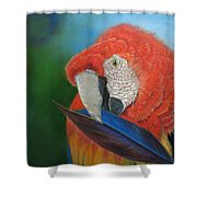 Presumida Shower Curtain