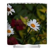 Pretty And Everlasting Shower Curtain