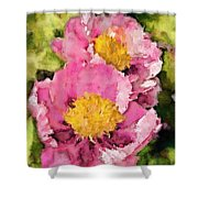 Pretty And Pink Shower Curtain