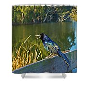 Pretty Bird At A Sunrise Shower Curtain