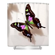 Pretty Butterfly Shower Curtain