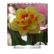 Pretty Daffodil Shower Curtain