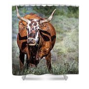 Pretty Female Cow With Horns Shower Curtain