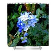 Pretty In Blue Photograph Shower Curtain
