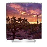 Pretty In Pink Desert Skies  Shower Curtain
