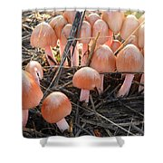 Pretty In Pink Mushrooms Shower Curtain