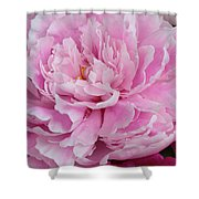 Pretty In Pink Peony Shower Curtain