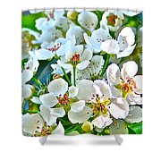 Pretty In White Shower Curtain