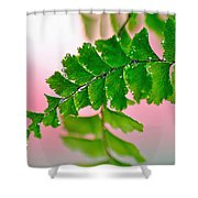 Pretty Maiden Shower Curtain