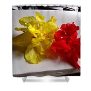 Pretty Pair - Double Hibiscuss Shower Curtain