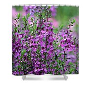 Pretty Pink And Purple Flowers Shower Curtain