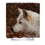 Pretty Profile Shower Curtain