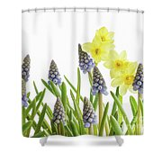 Pretty Spring Flowers All In A Row Shower Curtain