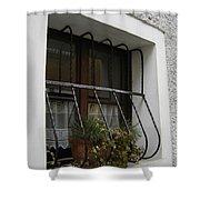 Pretty Window Shower Curtain