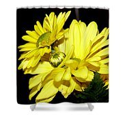 Pretty Yellow Flowers Shower Curtain