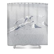 Preying Snow Angel Shower Curtain