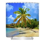 Prickly Bay Shower Curtain
