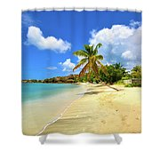 Prickly Bay Wide Shower Curtain