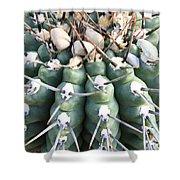 Prickly Cactus Shower Curtain