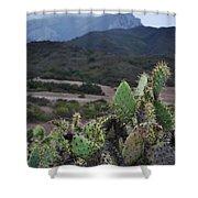 Prickly Pear Cacti Rancho Sierra Vista Satwiwa Mountains Shower Curtain