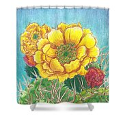 Prickly Pear Cactus Flowering Shower Curtain