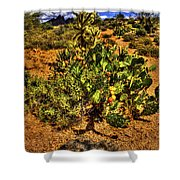 Prickly Pear In Bloom With Brittlebush And Cholla For Company Shower Curtain