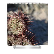 Prickly Pear  Shower Curtain