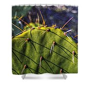 Prickly Pear Study No. 9 Shower Curtain