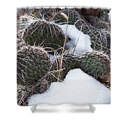 Prickly Pears Shower Curtain
