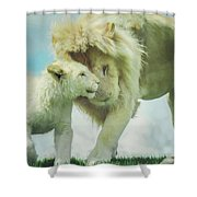 Pride Painting Shower Curtain
