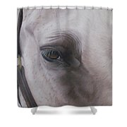 Prides Eye-pride Of The Lough Shower Curtain