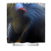 Primate1 Shower Curtain