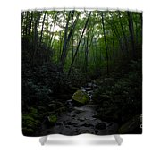 Primordial Forest Shower Curtain