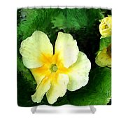 Primrose 2 Shower Curtain