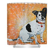 Primrose I Will Shine On You Shower Curtain