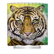 Prince Of The Jungle Shower Curtain