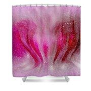 Princess Heart Shower Curtain
