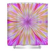 Princesswoz Shower Curtain